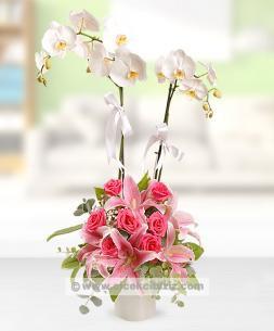 https://www.cicekcibiziz.com//img/product/m/2li-orkideli-aranjman-NB.jpg