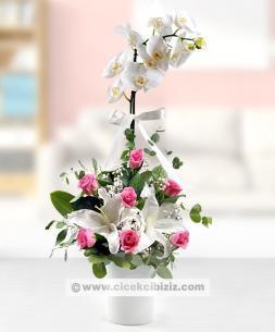 https://www.cicekcibiziz.com//img/product/m/beyaz-orkide-pembe-guller-6V.jpg