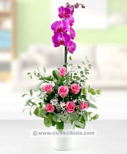 https://www.cicekcibiziz.com//img/product/m/mor-orkide-cicegi-ve-pembe-7-gul-arajmani-71.jpg