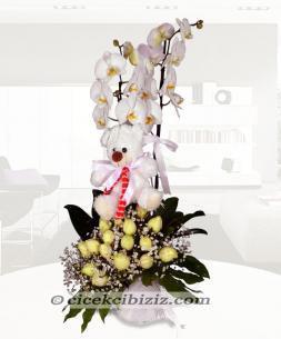 https://www.cicekcibiziz.com//img/product/m/orkide-aranjmani-9E.jpg