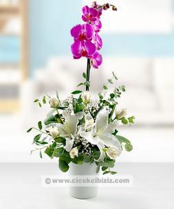 https://www.cicekcibiziz.com//img/product/m/orkide-cicegi-aranjmani-65.jpg
