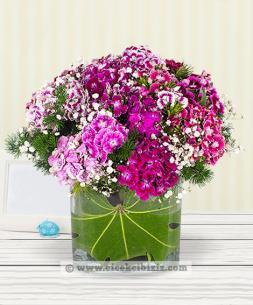 https://www.cicekcibiziz.com//img/product/m/sevgi-bahcesi-husnuyusuf-aranjmani-P1.jpg