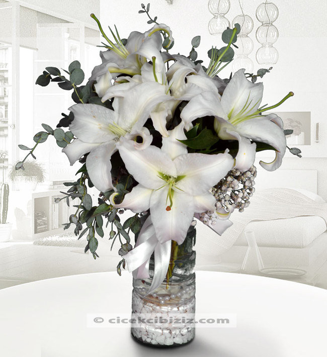 Beyaz Prens Lilyum Çiçeği