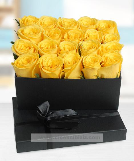 Premium Karede Sarı Güller