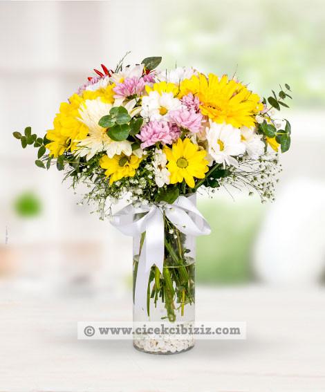 Renkli Papatyalar Çiçek Aranjmanı