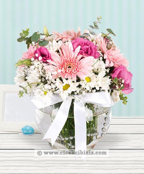 Saf Sevgi Kır Çiçeği